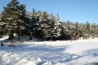 Zima 23